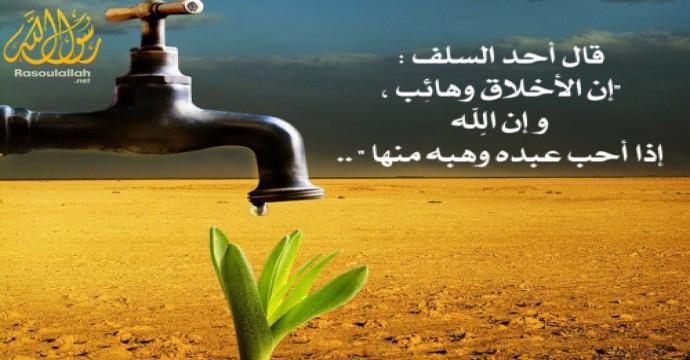 خطبة جمعة شفاء أمراض المجتمع فى القرآن الكريم