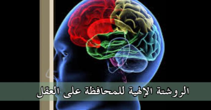 خطبة الجمعة_الروشتة الإلهية للمحافظة على العقل