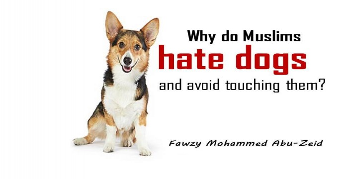 Do Muslims hate dogs?
