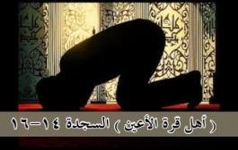 أهل قرة الأعين .. السجدة  14-16