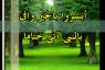 أبشروا بالخير وافى بالنبى آتى ختاما_للإمام أبى العزائم رضى الله عنه