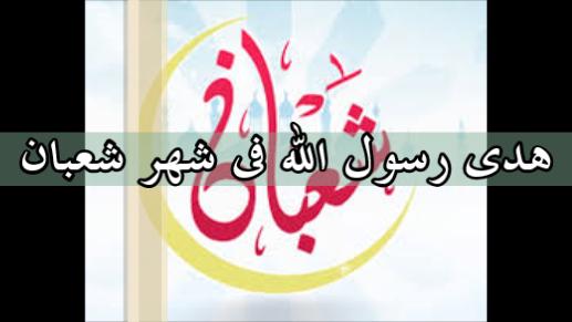 خطبة الجمعة_هدى رسول الله فى شهر شعبان